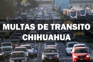 Transito CHIHUAUA